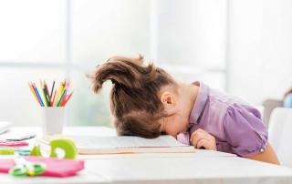 Negativer IQB-Bildungstrend alarmierend